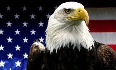 Baltagalvis erelis - JAV simbolis