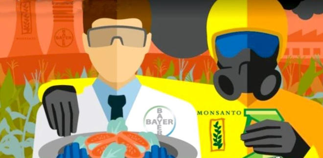 Monsanto - Bayer