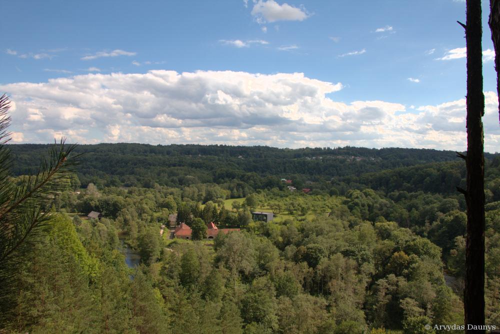 Nuo Pučkorių atodangos - miškai