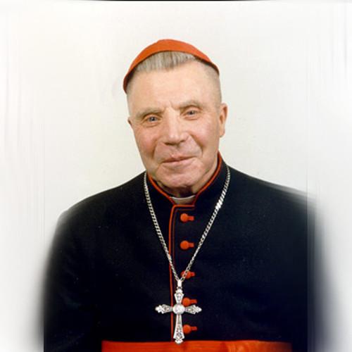 Kardinolas Vincentas Sladkevičius